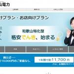 関電エリアおすすめ新電力「和歌山電力」のプラン比較・評判まとめ
