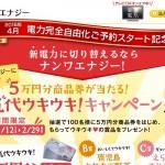 【九州エリア最有力】ナンワエナジーの料金プランを公開