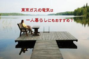 東京ガスの電気は一人暮らしに向いてない