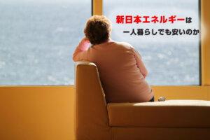 新日本エネルギーは一人暮らしでも安い